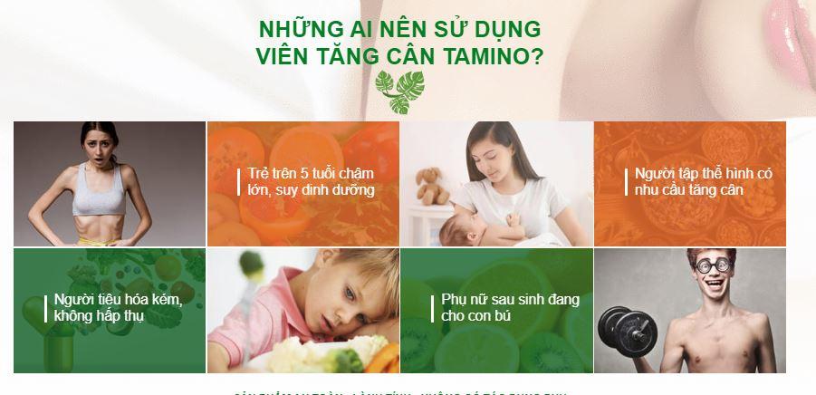 doi-tuong-su-dung-tamino